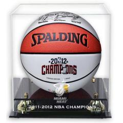 Championship Ball and Case Set
