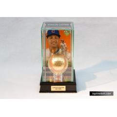 Special Release Starlin Castro Rawlings Gold Baseball